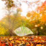 Ramassage des feuilles
